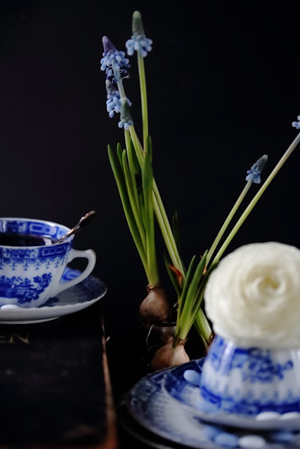 #kukkailottelua, still life, valokuvaus, kukkia
