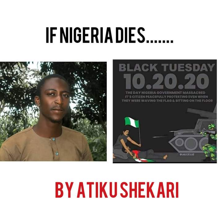 [Poem] if Nigeria Ever Dies, Hatred Killed Her by Atiku Shekari #Arewapublisize