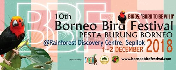 Pesta Burung Borneo 2018