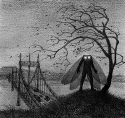 Mothman koimies