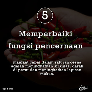 manfaat ngemil pedas | Emmh! Snack