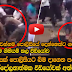 Amazing police video In Colombo Must Watch