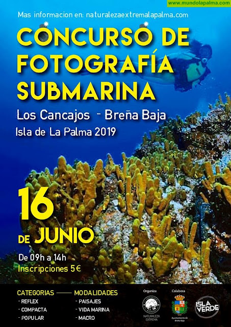 Concurso Fotografía Submarina Breña Baja