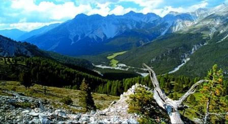 Tempat Wisata Paling Indah Untuk Dikunjungi Di Negara Swiss Taman Nasional Swiss / Swiss National Park.