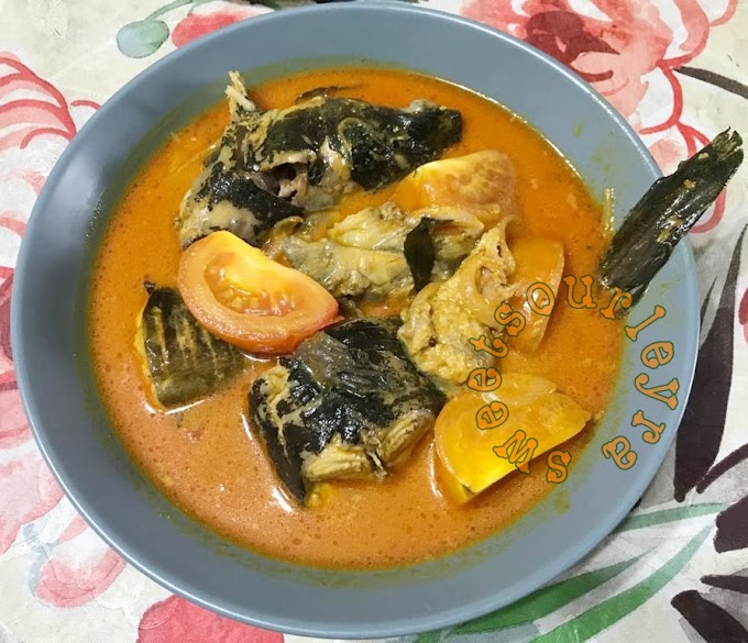 Resepi Gulai Ikan Sembilang Sedap Dan Menyelerakan