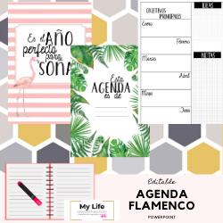 agenda, imprimir, editar, powerpoint, descargar, escolar,