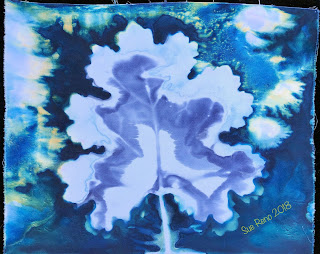 Wet cyanotype_Sue Reno_Image 527