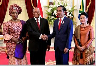 Hubungan negara Republik Indonesia - Afrika Selatan