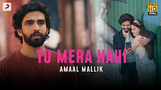 TU MERA NAHI (तू मेरा नहीं Lyrics in Hindi) - Amaal Malik