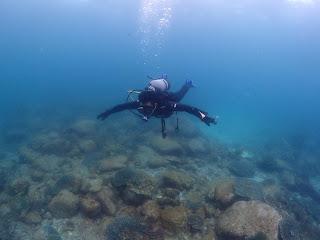 2021年5月13日の柏島ダイビング