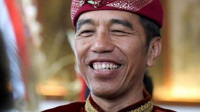 AWAS! Hina Jokowi dan Ma'ruf Amin Bakal Dipenjara Maksimal 4,5 Tahun