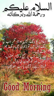 آالسلام علیکم صبح بخیر دعا - صبح بخیر اردو دعا - صبح بخیر زندگی دعا