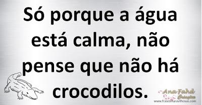 Só porque a água está calma, não pense que não há crocodilos.