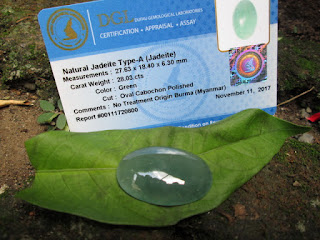 Natural Jadeite Jade Type A Birma Big Size Oil Texture Memo DGL JDT001