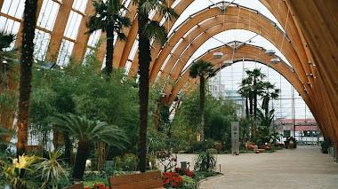 Jardín de Invierno en la Ciudad: Sheffield's Winter Garden