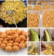HOW TO PRODUCE, PACKAGE AND SELL CHINCHIN, PLANTAIN CHIPS AND PEANUT