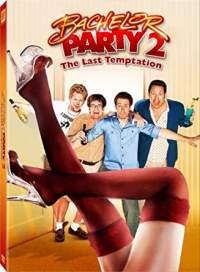 Bachelor Party 2 The Last Temptation 2008 Hindi Dubbed 480p Dual Audio Movies Download