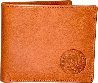 best-wallet-brands-for-men-in-india