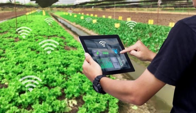 Herry Dermawan : Kebaradaan Petani Milenial Harus Mampu Meningkatan Hasil Pertanian