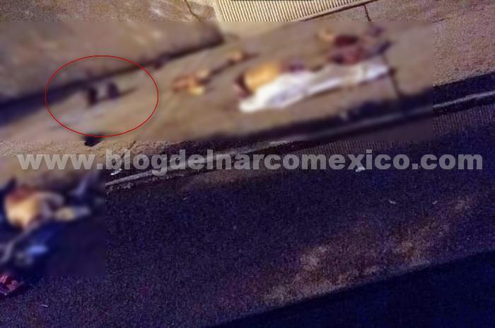 Sicarios levantan, torturan, descuartizan y tiran los cuerpos en Rincón de Tamayo perteneciente a Celaya; Guanajuato