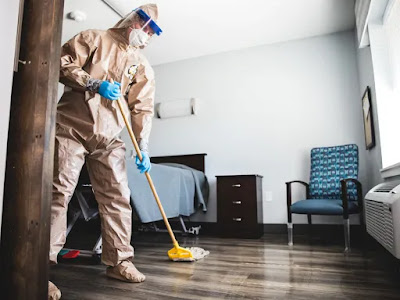 Savvy Cleaner Training