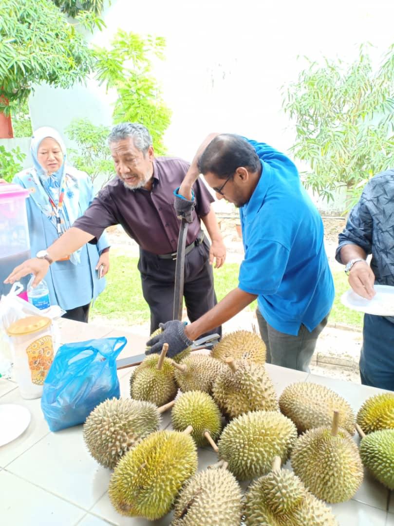 khasiat buah durian, kelebihan buah durian, buah durian terpilih