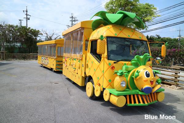 Nago Pineapple Park Okinawa Japan Blue Moon Travel Blog Self Travel Backpack One Day