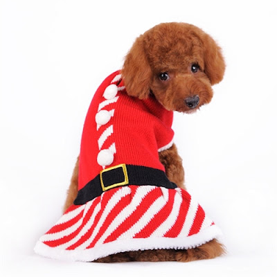 Santa Girl Sweater Dress