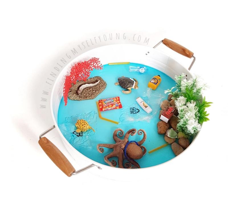rock pool environmental small world
