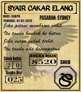 SYAIR SYDNEY 01-02-2020