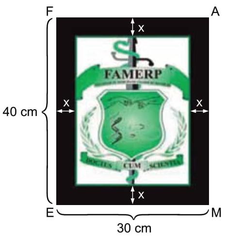 FAMERP 2021: A figura indica um quadro retangular FAME que contém o brasão da FAMERP, também em um retângulo.