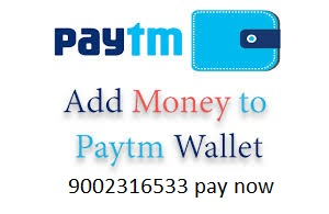 pay with paytm donation help donation keralalotteryofficial