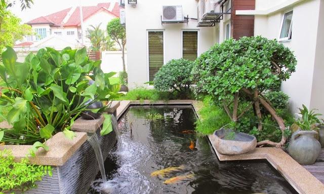Kolam Ikan di Rumah Minimalis