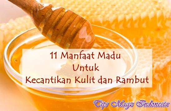 11 manfaat madu untuk kecantikan