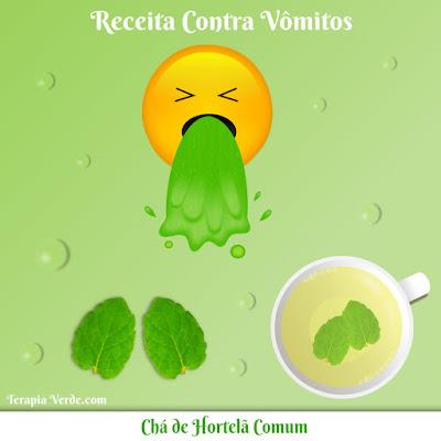 Receita Contra Vômitos: Chá de Hortelã Comum