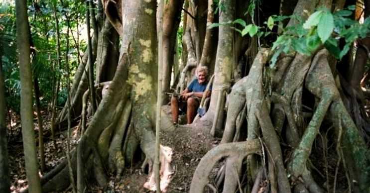 Ormanda yaşayan bu adam Gürcü prensesi Elizabeth Matchabelli'nin varisiydi.