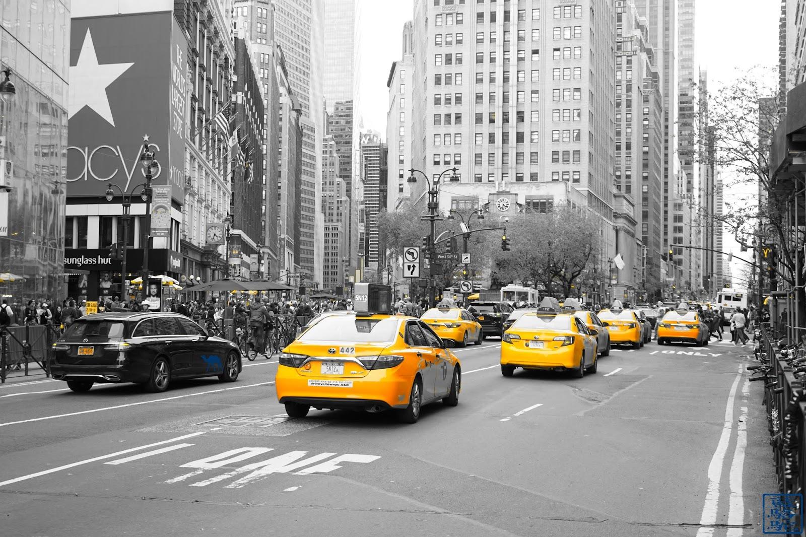 Le Chameau Bleu - Rue de Manhattan - New York USA