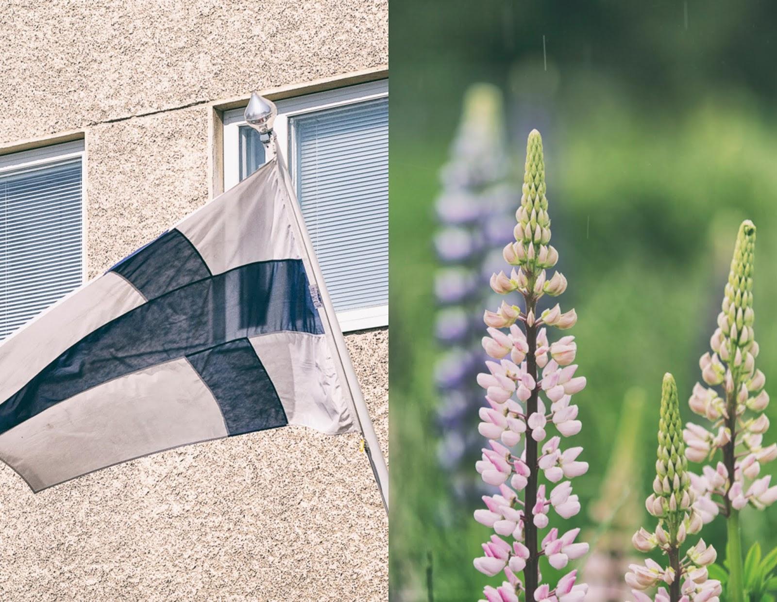 Helsinki, juhannus, visithelsinki, this is finland, visit finland, suomi, valokuvausk, valokuvaaminen, valokuvaaja, photographer, Frida Steiner, Visualaddict, photoblog, blogi, visualaddictfrida, myhelsinki, Hietalahti,