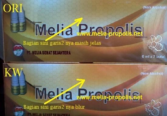 http://www.melia-propolis.net/2016/03/propolis-melia-kemasan-baru-2016.html
