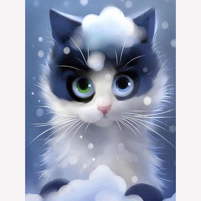 gato imagen de photoshop
