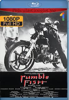 La Ley De La Calle [1983] [1080p BRrip] [Latino-Ingles] [HazroaH]