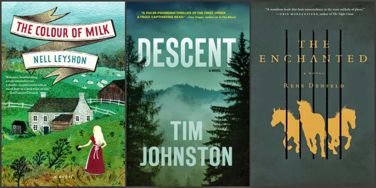 Colour of Milk by Nell Leyshon, Descent by Tim Johnston, The Enchanted by Rene Denfeld
