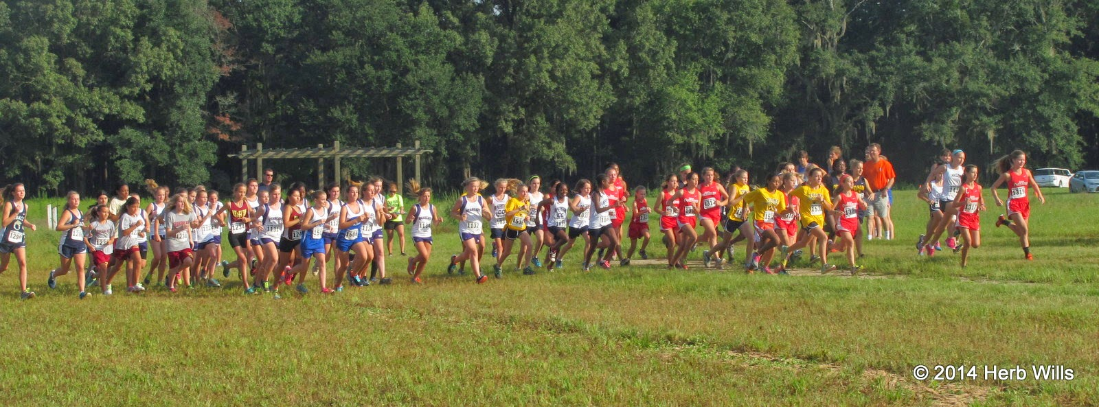 Godby High's 2014 Cougar Cross-Country Challenge
