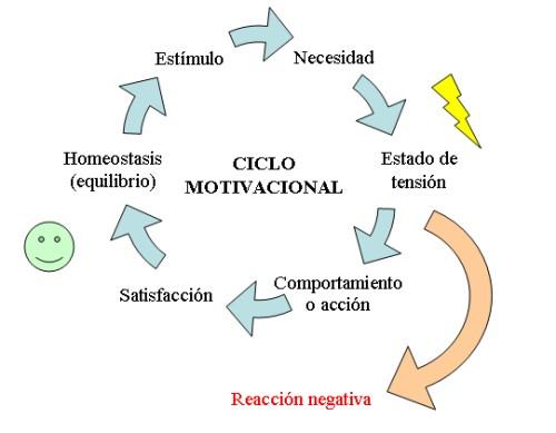 Aprende Mas Crece Mas El Ciclo Motivacional