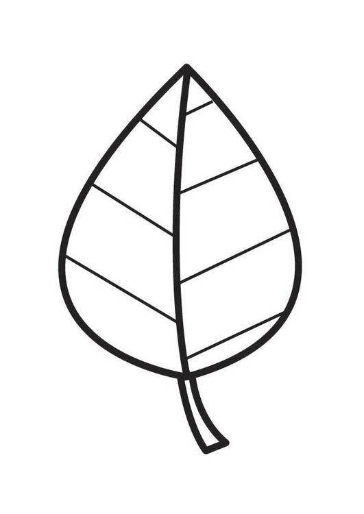 Hình tô màu cái lá đơn giản