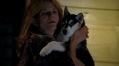 Cachorro Husky Siberiano en la serie True Blood (Sangre Fresca)