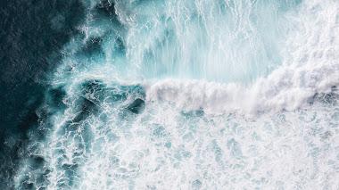 Test de literatura ambientada en el mar