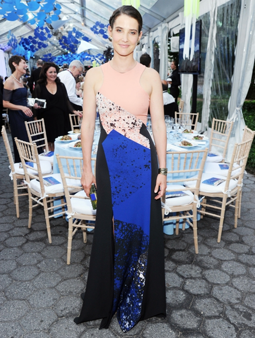Cobie Smulders wears a Prabal Gurung Dress
