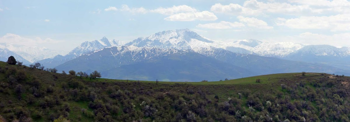 DSC03021 Panorama