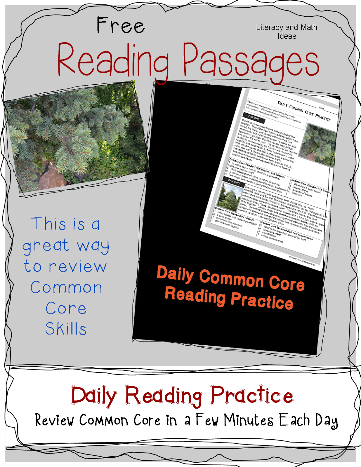 Reading Comprehension Passages 3rd Grade Common Core